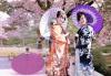 Ngành ngôn ngữ Nhật (Tiếng Nhật) là gì? học những gì, ra trường làm gì?